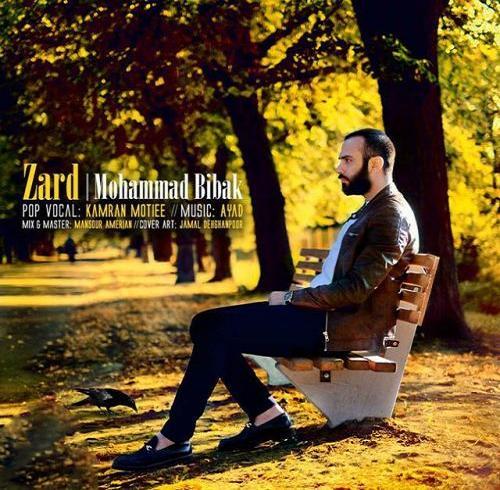 دانلود آهنگ محمد بیباک به نام زرد